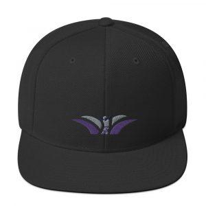 TTW Snapback Hat
